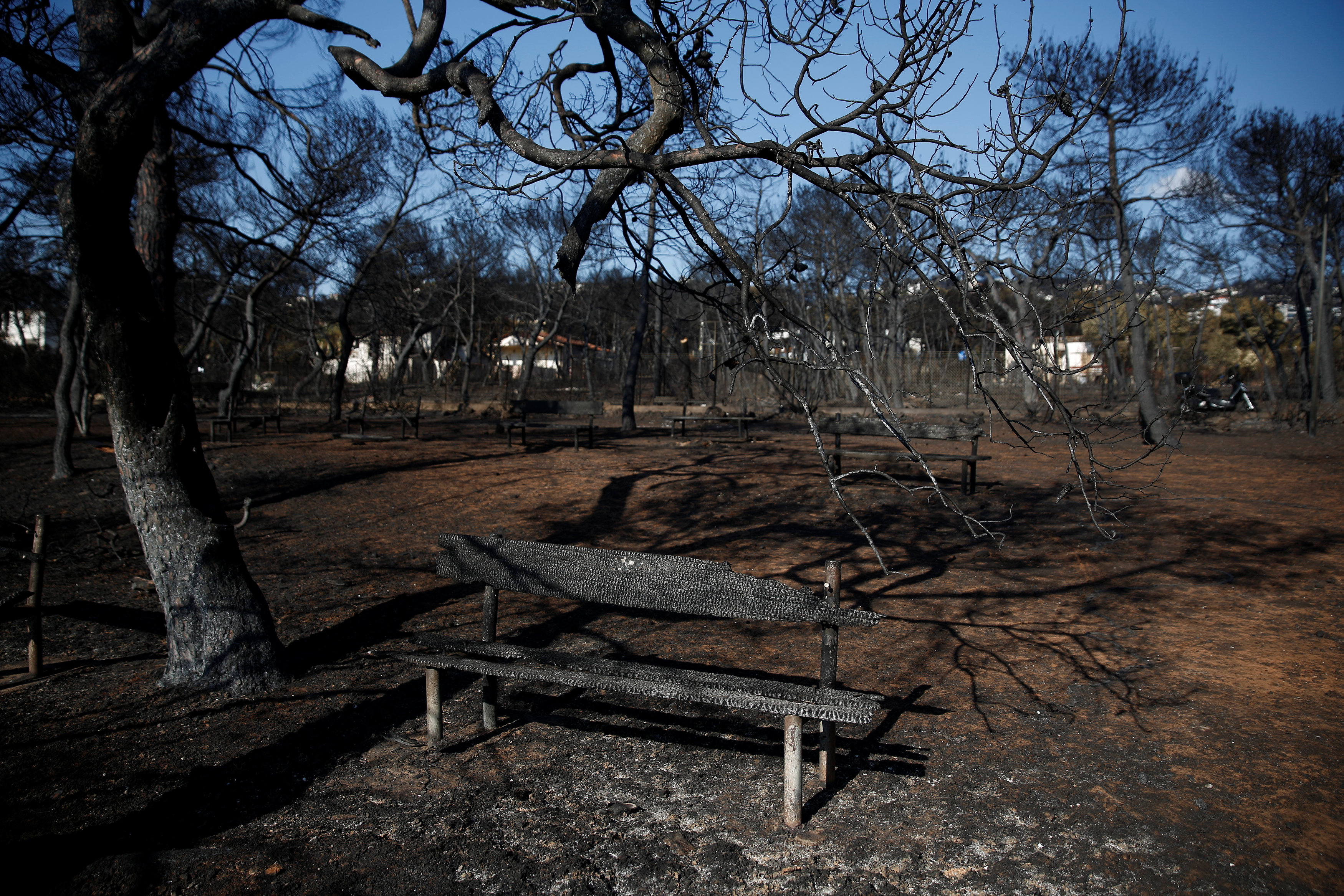 A burnt bench is seen in a camping following a wildfire in the village of Mati, near Athens