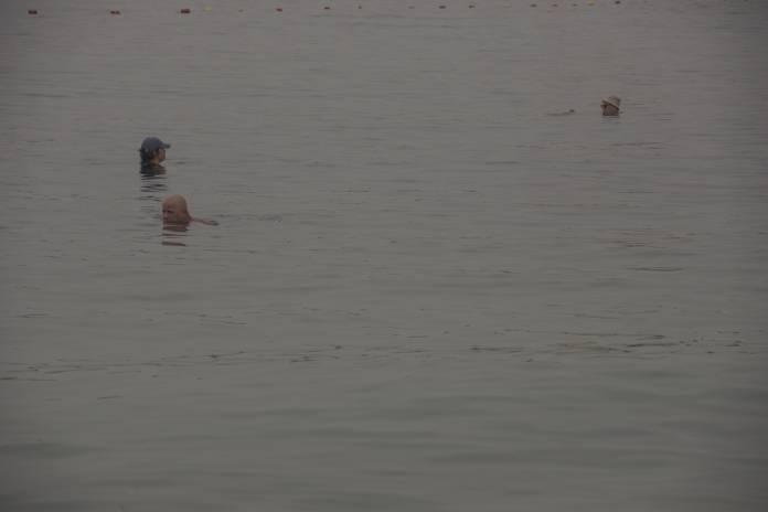 swimming autumn